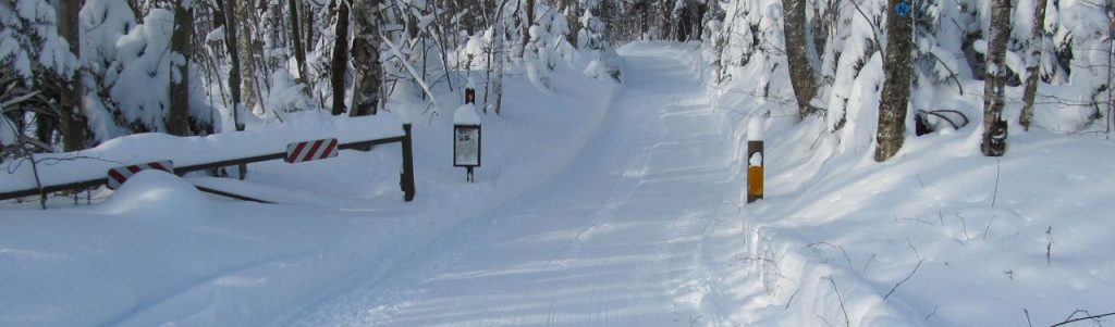 A snowy snowmobile trail in Chittenden, Vermont